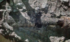 В Колпино сотрудники ОМОН обследовали боеприпас, представляющий опасность