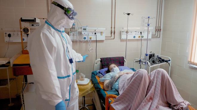 Более 2,2 тысячи детей родились в Петербурге с начала года в результате ЭКО