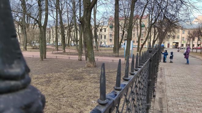 Парки и скверы Петербурга открыли после сильного ветра