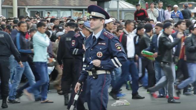 Автолюбитель пытался в Петербурге заменить водительские права с фальшивой медсправкой