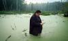 Саакашвили в кустах: Интернет заполнили фотожабы и приколы