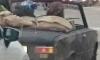 Особо морозоустойчивые петербуржцы катаются по городу в открытом кабриолете