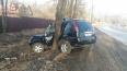 "Nissan X-Trail ""обнял дерево"" в Красносельском районе ..."