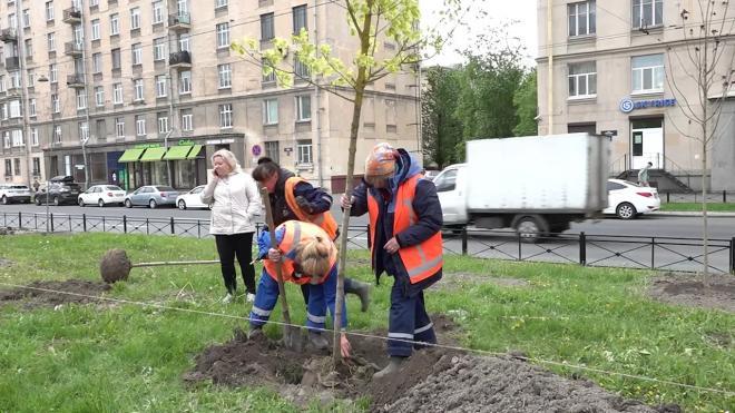 В 2021 году Петербург выделит 2,3 млрд рублей на благоустройство