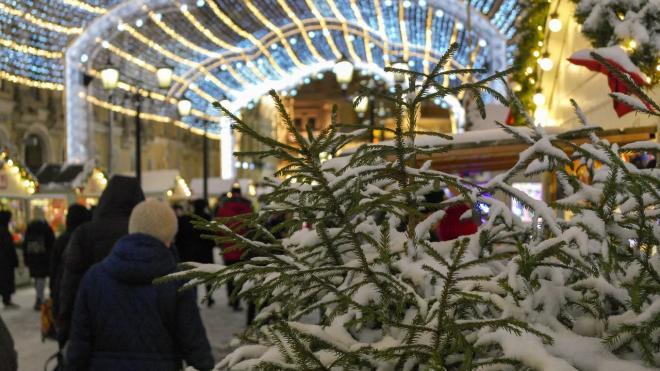Около 90% туристов потерял Петербург в новогодние праздники