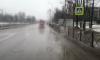В Петербурге снег растаял вместе с асфальтом