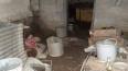 Двое злоумышленников похитили и избивали мужчину в Приоз...
