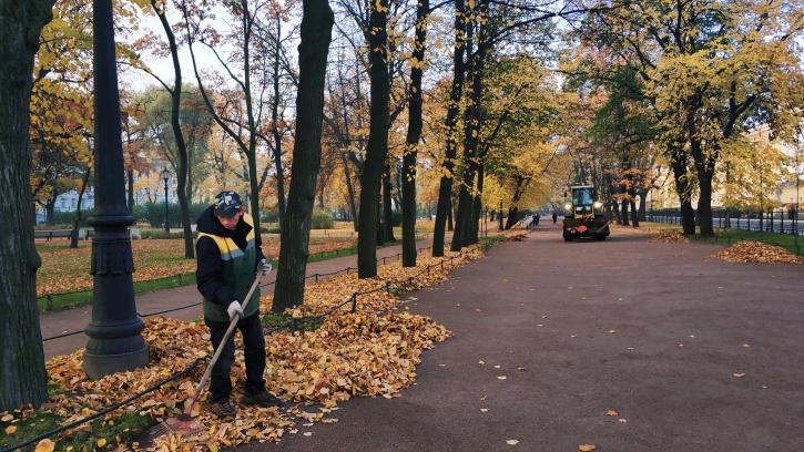 В Петербурге появится сервис, позволяющий синхронизировать уборку территорий