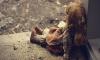В Башкирии под Нефтекамском на улице нашли 9-месячного малыша