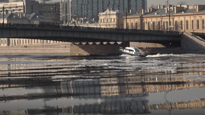 Экослужба в Петербурге за месяц получила около 100 обращений