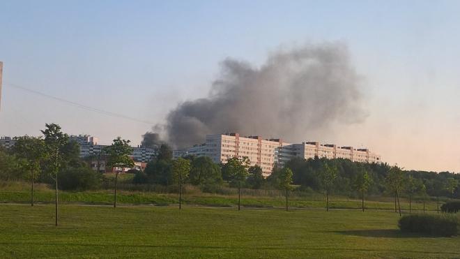 В Петербурге загорелся Ленфильм