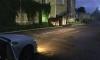 Очевидцы: на 7-м Предпортовом проезде обнаружена бесхозная лошадь