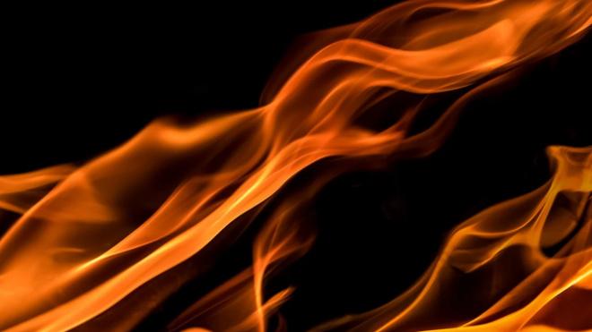 Площадь пожара в Петродворцовом районе достигла 1600 кв.метров