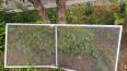 На Алтае 3-летний ребенок выпал  из окна детсада