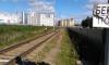 Поезд сбил пешехода возле Приморского проспекта