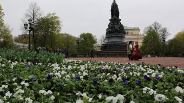 Екатерининский сквер украсили 15 тысяч цветов виолы
