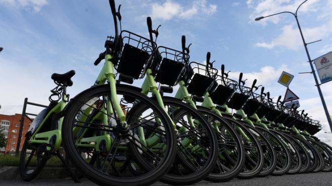 Администрация Выборгского района планирует провести велодорожки по всей исторической части города