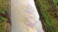 В Смольном назвали причину странного цвета реки Волковки