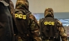 МВД: схвачен экстремист, поднимавший вооруженное восстание через соцсети
