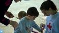 Более 2000 молодых жителей Ленобласти участвует в ...