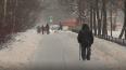 """""""Настоящая зима"""" в Петербурге наступит в середине ..."""