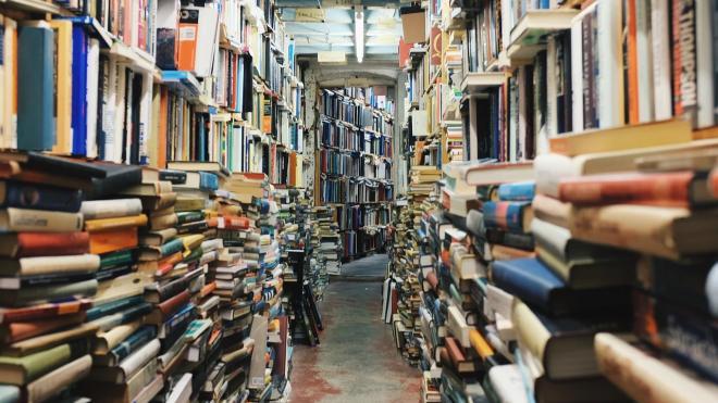 Петербургских библиотекарей заставили участвовать в  голосовании за поправки в Конституцию