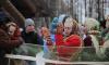 В Парке 300-летия с размахом отметят Масленицу