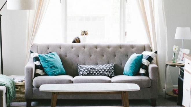 В Петербурге вырос спрос на диваны во время самоизоляции