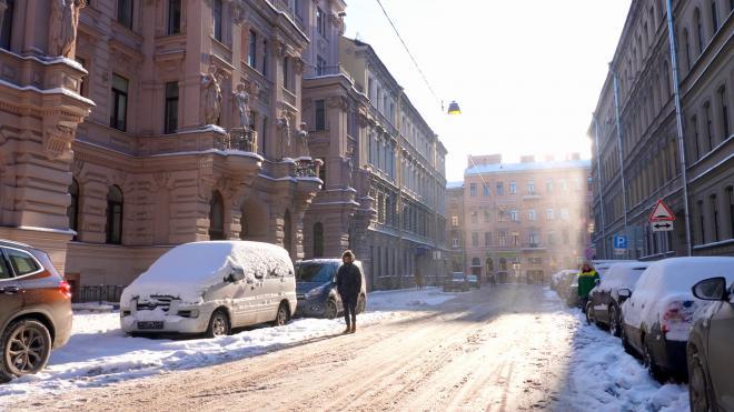 В Госжилинспекции рассказали, кто и как должен убирать снег в Петербурге