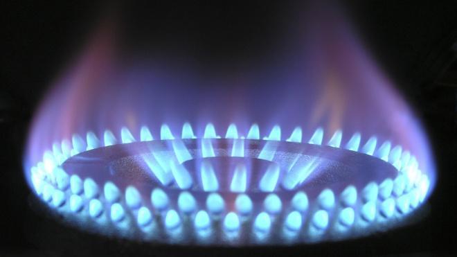 """""""Газпром"""" уверен, что """"Северный поток-2"""" достроят в этом году"""