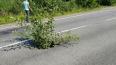 По дороге в деревню, где жила теща Медведева, провалился ...