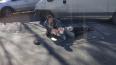 Фургон сбил пожилого мужчину на Дороге жизни