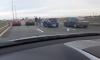 На Софийской перебегающая дорогу собака стала причиной ДТП