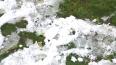 На Васильевский остров завезли снег для съемок о заложни...