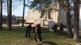 Полянское поселение: субботники прошли с главой муниципа...