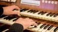 В Петрикирхе сыграют органную музыку в поддержку детей-и...