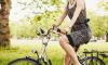 В Гатчинском районе водитель насмерть сбил велосипедистку