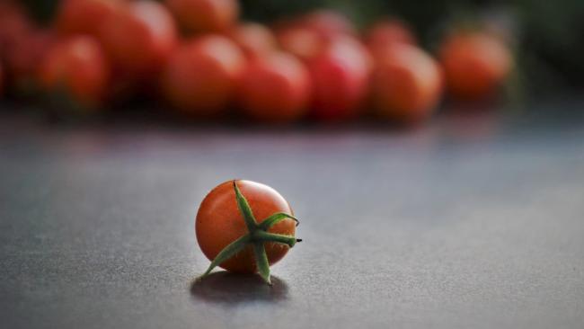 Россельхознадзор вводит запрет на ввоз части помидоров из Марокко