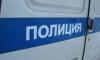 В пруду Петербурга нашли связанный труп пенсионера