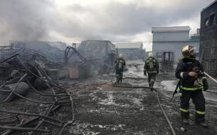 Спасатели борются с масштабным пожаром на лакокрасочном заводе в Волосовском районе