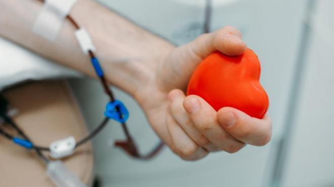Петербуржцев приглашают сдать кровь на донорской акции 15 октября