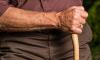 Пенсионерам в Петербурге доплатят до прожиточного минимума