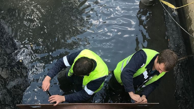 Арбитражный суд аннулировал разрешение на сброс отходов в реку Новая