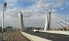 В Петербурге оштрафовали ответственного за мост Бетанкура