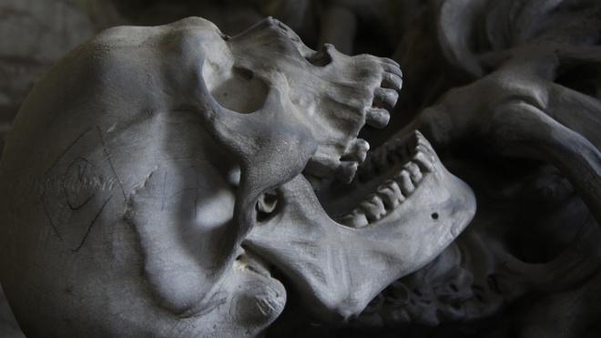 В Калининском районе школьники обнаружили на дереве скелет человека