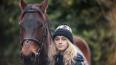 Школьницу из Ленобласти травмировал собственный конь