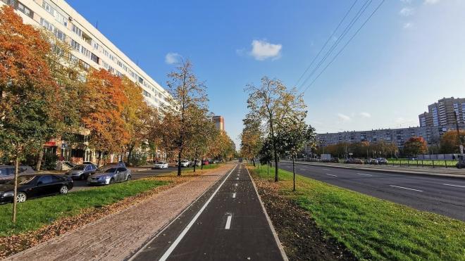 Комитет по транспорту займется велодорожками, платной парковкой и организацией выделенных полос в Петербурге