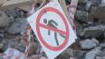 Экологи вывезли из Петербурга за неделю более 50 кг хими...