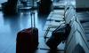 В Пулково задержали эмоционального пассажира с марихуаной в багаже