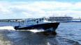 Полиция Петербурга наказала 110 рыбаков-нарушителей ...